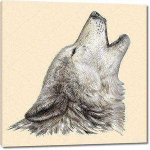 Голова воющего волка