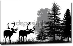Силуэты оленей в лесу