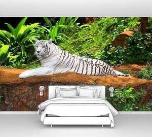 Белый тигр в зелени