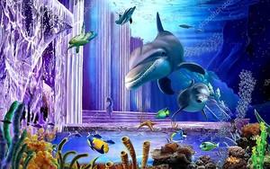 Дельфины и черепаха в кораллах