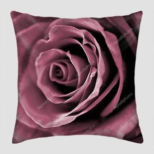 Бордовая роза крупным планом