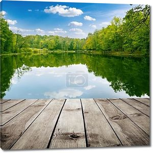 Красивый лес и деревянные доски