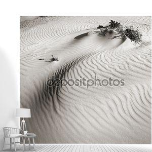 дюн в пустыне Негев. Израиль.