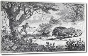 Betschuana племя человек находит своего брата, едят с Лев