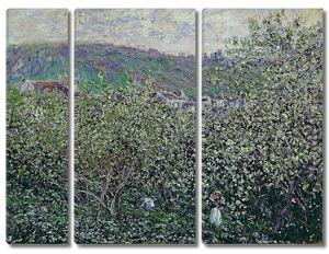 Моне Клод. Цветущие Сливовые Деревья, 1879