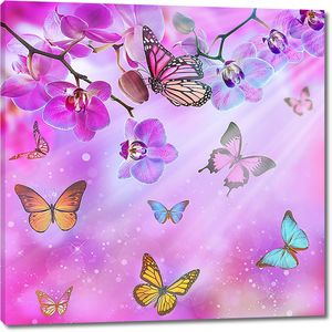 Разноцветные бабочки и орхидеи