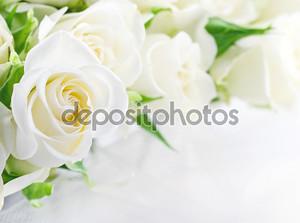 Крупным планом из белых роз