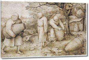 Брейгель Рисунок. Пчеловоды