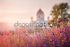 Вид на Собор Христа Спасителя в Москве