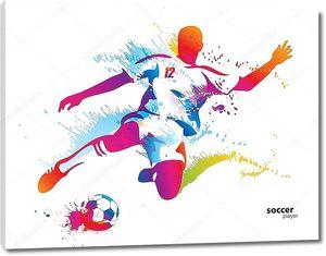 Игрок в футбол