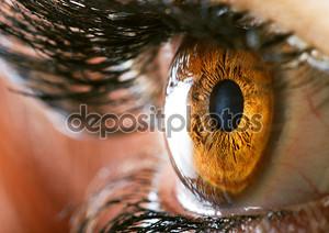 глазной макрос