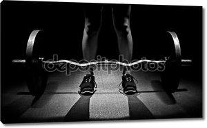 Олимпийские веса становая тяга