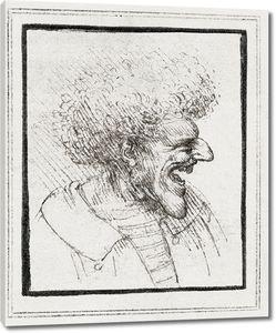 Леонардо да Винчи. Карикатура мужчины с густыми волосами