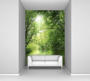 Отель Sunbeam в зеленом лесу с водой