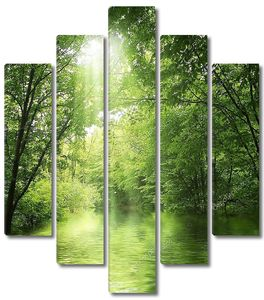 Озерцо в зеленом лесу