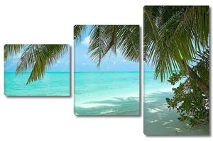 Красивый тропический пляж с кокосовыми пальмами