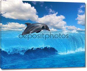Серый Дельфин прыжки под облаками