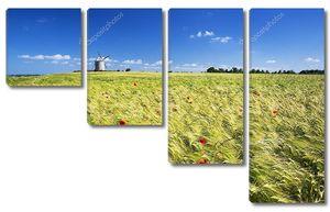 Вид на мельницу и пшеничное поле