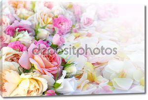 Фон цветы розы