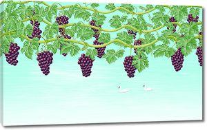 Ветви винограда