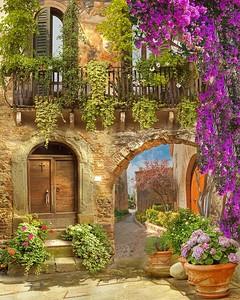 Яркая улица с цветами и растениями