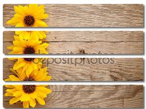 Декоративные Подсолнухи на деревянных фоне