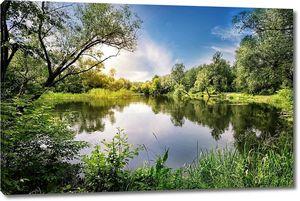 Озеро с деревьями по берегу