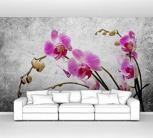 Орхидея на винтажном фоне