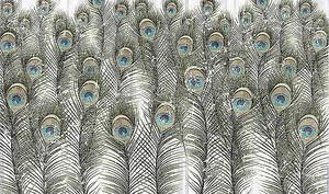 Перья павлинов в узоре