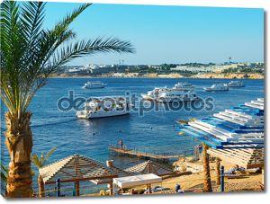 Красное море, Египет