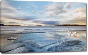 Лебеди на заливе