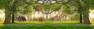 Дикие животные на лесной поляне
