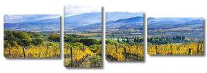 Золотые виноградники Тосканы