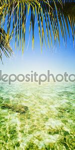 Тропические моря. Вертикальная панорамная композиция.