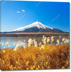 Гора Фудзи отражается в озере