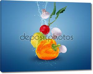 Свежие овощи в брызгах воды