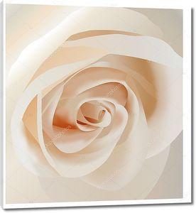 Вектор белые розы крупным планом