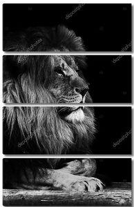 Портрет  благородного льва