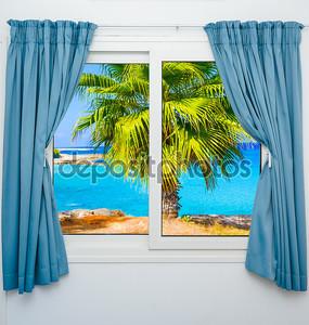 представление окна о морской пальме