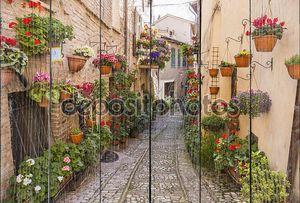 Цветочные улицы Спелло