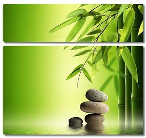 Зеленый бамбук и камни