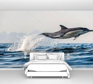 Длинноклювый обычный дельфин