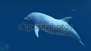 3D визуализация cg дельфина