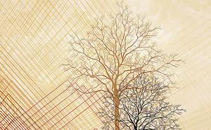 Дерево на клетчатом фоне