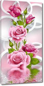 Розовые розы с каплями воды и белые кольца