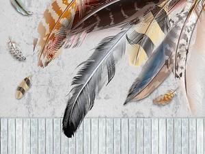 Забор, большие и маленькие разноцветные перья