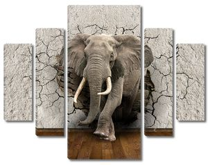 Слон из стены