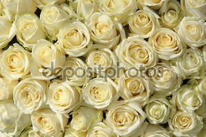 Группа белых роз цветочные Свадебные украшения