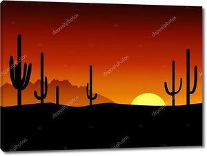 Закат. Пустыня. Кактус