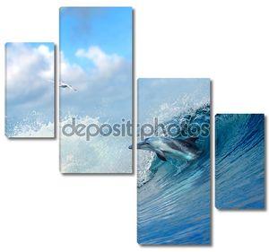 Дельфин, прыгая из фигурных ломать океана волны